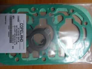 Комплект всасывающих клапанов с прокладками (104-4384)